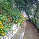 Parco Rimebranza