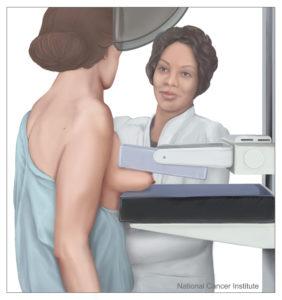 mammografia.anxur time