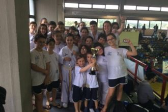 Hwarang-silla, taekwondo, di lello. anxur time