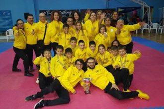 taekwondo fenice. anzur time